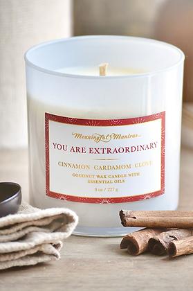 You Are Extraordinary Cinnamon, Cardamom and Clove Candle