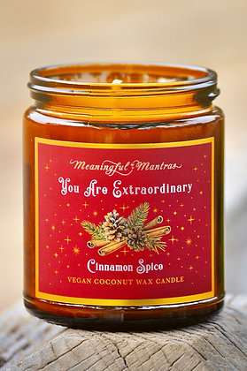 Cinnamon Spice Holiday Aromatherapy 8oz Candle/ You Are Extraordinary