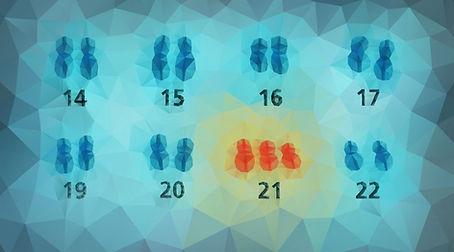 typesmutation-01.jpg