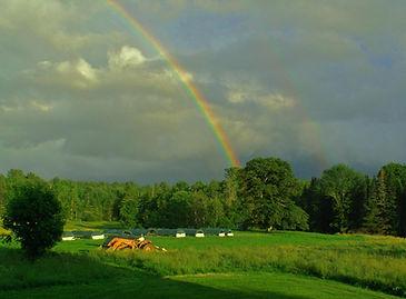 farm rainbow tractor.jpg