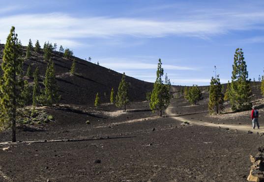 13-samara-parque-nacional-teide-fc.jpg