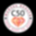 C50 Logos 03.png