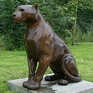 Chris Tap - jaguar