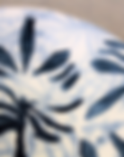 Dinner plate closeup 2.png