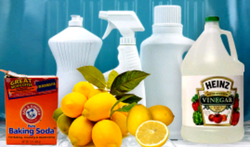 Our eco-friendly products