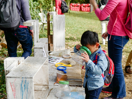Forest Schools: What's All The Fuss About?