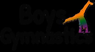 Boys Rec Logo.png