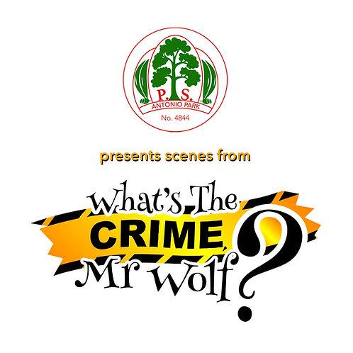 "Antonio Park Primary School - ""What's The Crime Mr Wolf"""