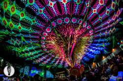 Insane festival_2015.jpg