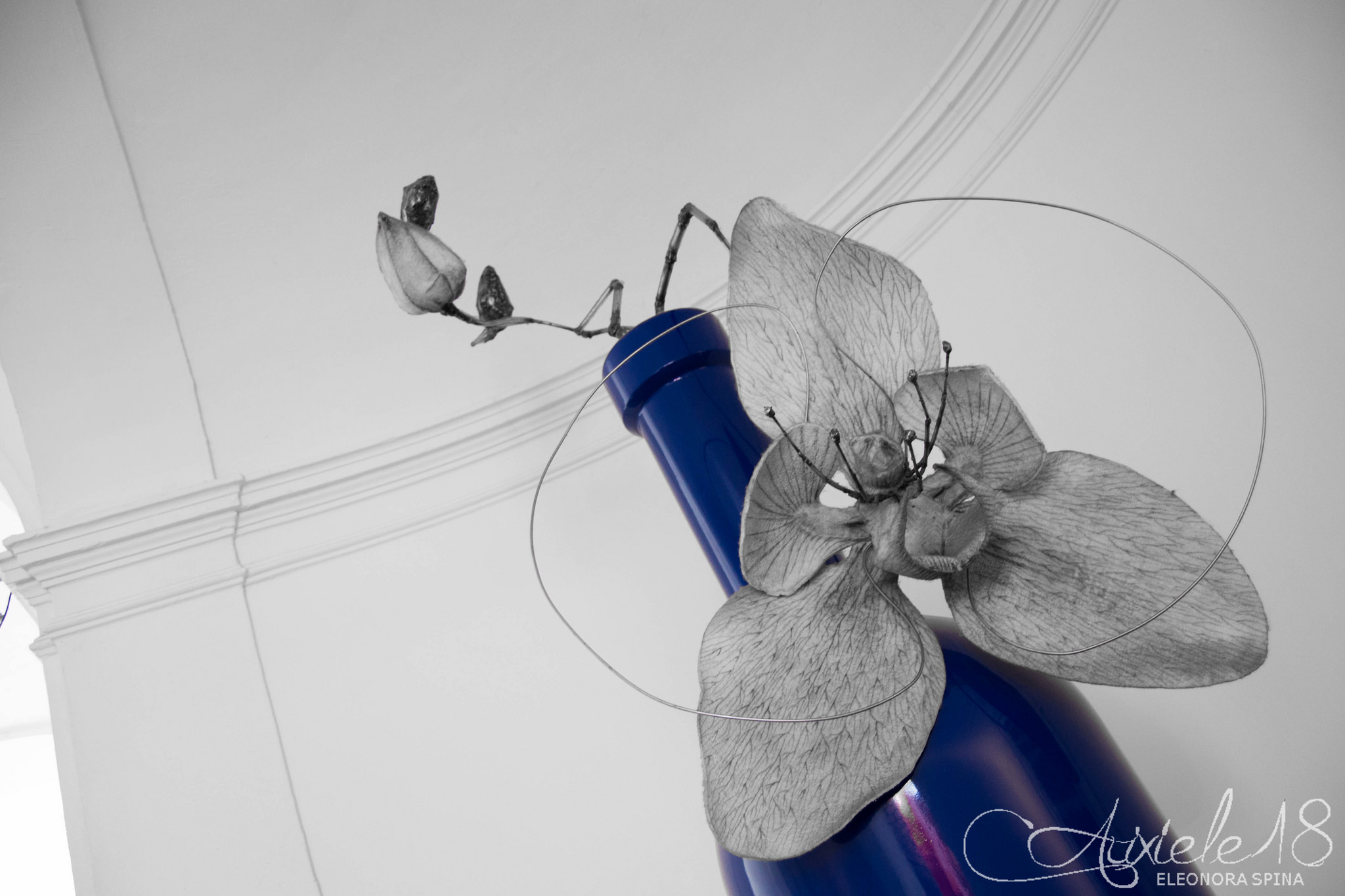 Bottiglie d'artista 2013