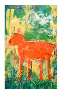 """""""Orange Dog in Grass"""""""