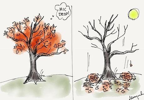 Inspired by the tree of Leanne Hazlett &