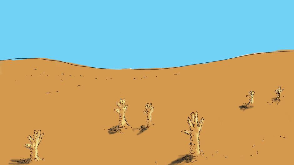 Sand Hanitizer