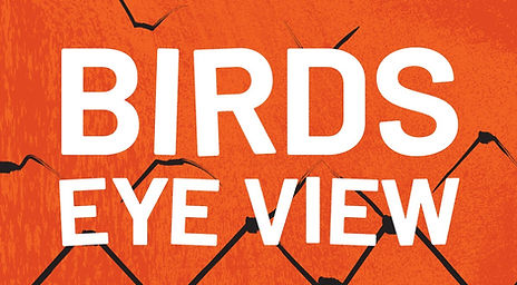 Birds Eye View podcast