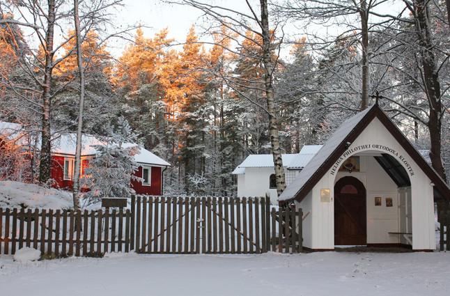 winter medium.jpg