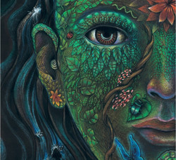 Reflections-on-Ayahuasca-Psychedelics-and-Marijuana-Image-Plant-Life-by-Clancy-Cavnar