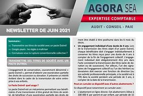 #expert-comptable_agora-sea.fr_ Newsletter de juin 2021 SI.png