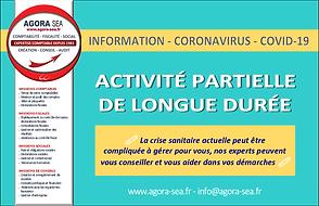 #expert-comptable@agora-sea.fr_Activité