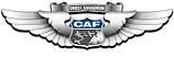commemorative air force logo