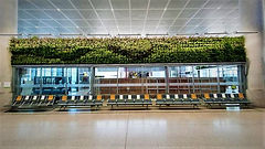 L_221440_jardines-aeropuerto-de-malaa-on