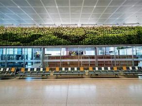 Un aeropuerto español se llena de verde con jardines verticales