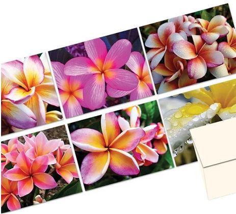 Plumeria Note Card Set
