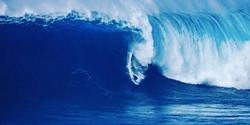 Slider - Jaws Photo