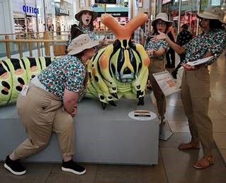 Bug Bodyguards 2.jpg
