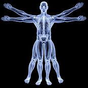 Movimentum-Bilan-postural-1.jpg