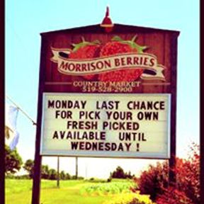 Morrison Berries Country Market