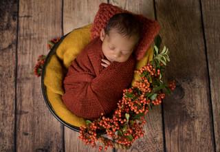 autumnnewbornphoto.jpg