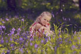 bluebells_photo.jpg