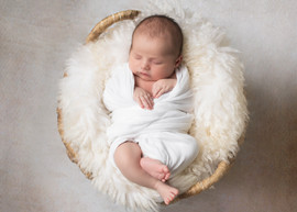 newborninbasket.jpg