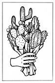 Cactus Bouquet.png