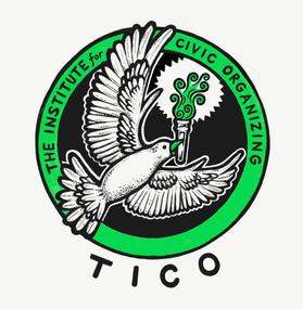 The Institute for Civic Organizing (TICO)