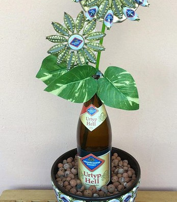 Blume eingereicht von Anita Fuchs