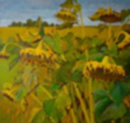 """Картина маслом """"Подсолнухи"""", современного русского художника Анастасии Нестеровой, живопись, пейзаж"""
