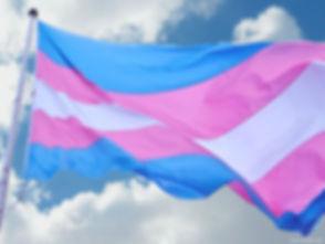transflag750.jpg