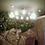 Thumbnail: Люстра Паук Lamp Ceiling Spider 12 — Eichholtz