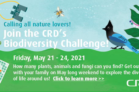 Are You Up for CRD's Biodiversity Challenge?