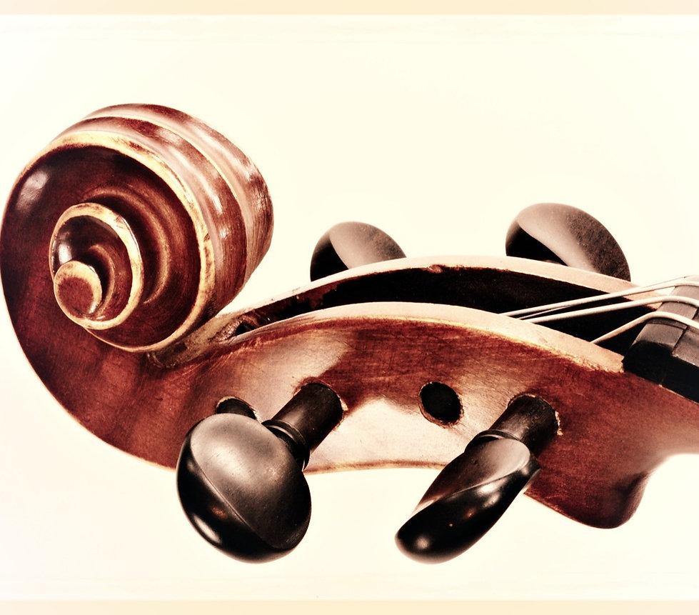 Violin Viola Teacher Lessons
