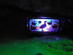 FW2014_Pooles-Cavern-cave(739)_res.JPG