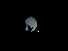 FW2013_BPF-Scratch-Night-Fingers-and-Thu