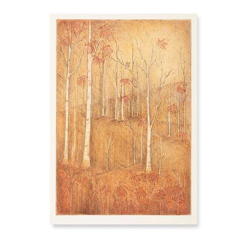 """Fall Birches  8x11 1/2"""""""