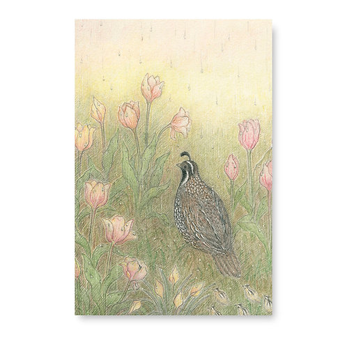 Quail and Tulips