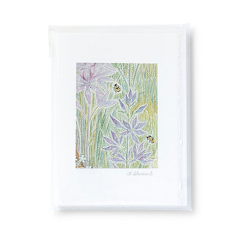 Set of 5 large, assorted greeting cards