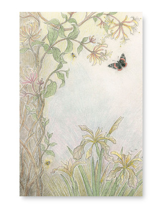 Honeysuckle and Butterfly