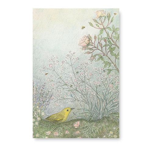 Warbler and Rose