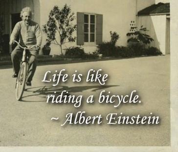 Biking, it's for the birds