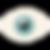 eye (6).png